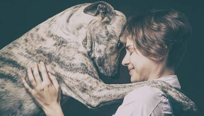 Dogs Share Genes with Humans for Social Abilities