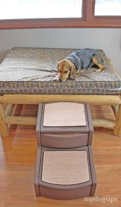 Testing Pet Gear Easy Step II for Dogs
