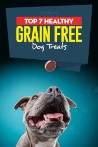 The Best Grain Free Dog Treats
