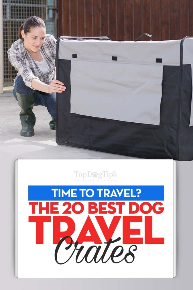 Top 20 Best Dog Travel Crates for Your Pet