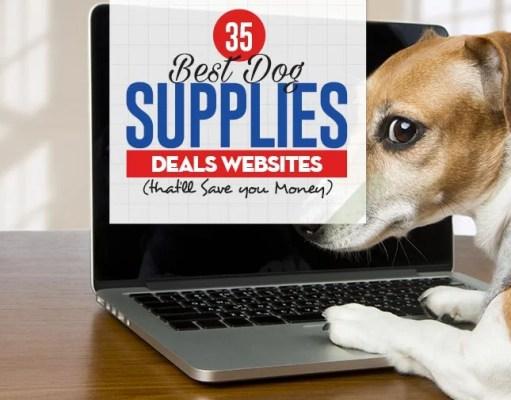 Top 35 Best Dog Supplies Deals Websites