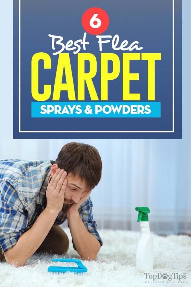 Top Rated Best Flea Carpet Sprays & Powders