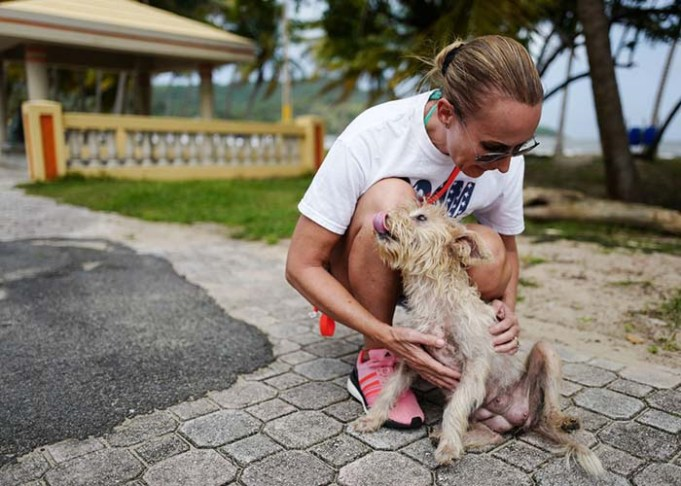 Woman Saves Hundreds of Dogs Left to Die on 'Dead Dog Beach'