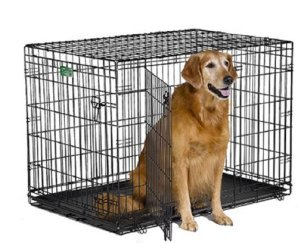 """MidWest 42"""" iCrate Folding Metal Dog Crate"""