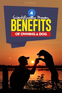 Physical and Social Benefits of Owning a Dog