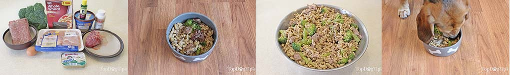 The Best Homemade Weight Loss Dog Food Recipes