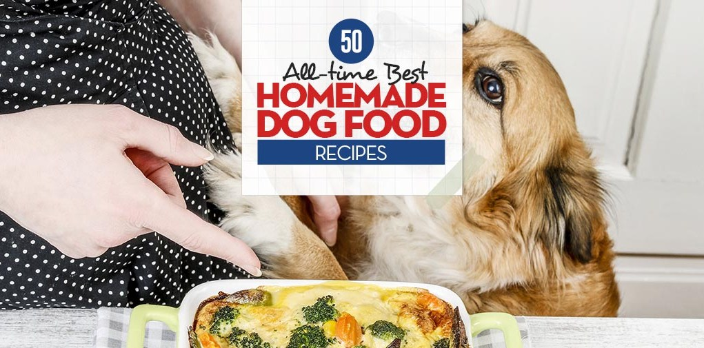 Top Best Homemade Dog Food Recipes