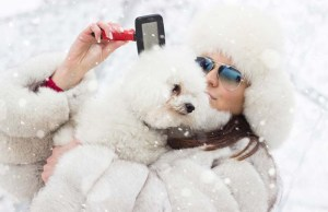 Tips for Excessive Dog Shedding in Winter