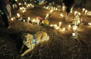 Caring Canines Comfort Las Vegas After Tragedy