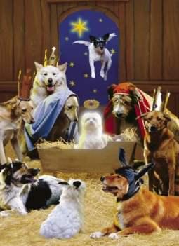 Avanti Christmas Cards, The 12 Dogs of Christmas
