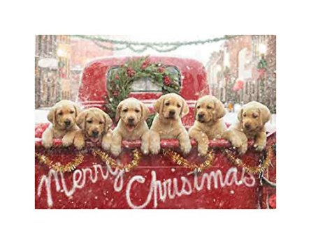 Avanti Press Christmas Cards, All The Love Your Heart Can Hold