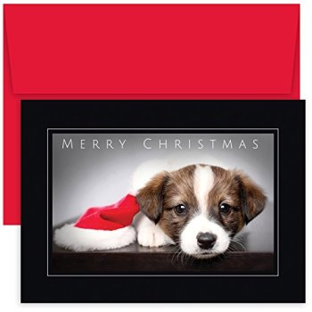 Masterpiece Studios Holiday Collection Boxed Christmas Cards