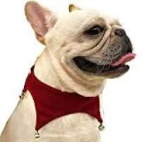 DogLemi's Pet Dog Bandana with Jingle Bells