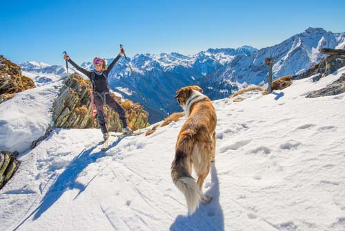Check Out Dog-Friendly Vacation Resorts