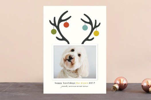 Antler Puppy Christmas Card