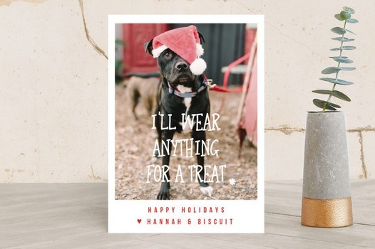 I'll Wear Anything For A Treat Doggie Holiday Card