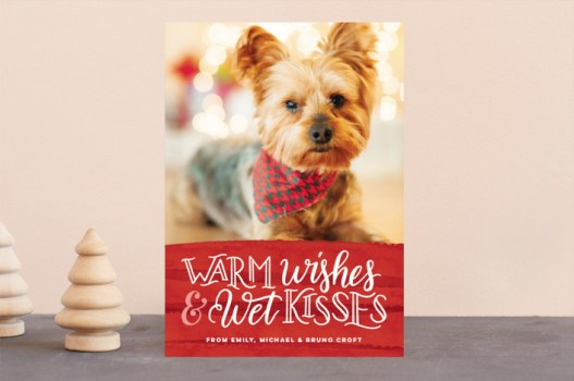 Warm Wishes & Wet Kisses Puppy Holiday Card