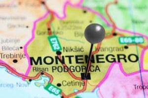 Dog Holiday Resort in Montenegro