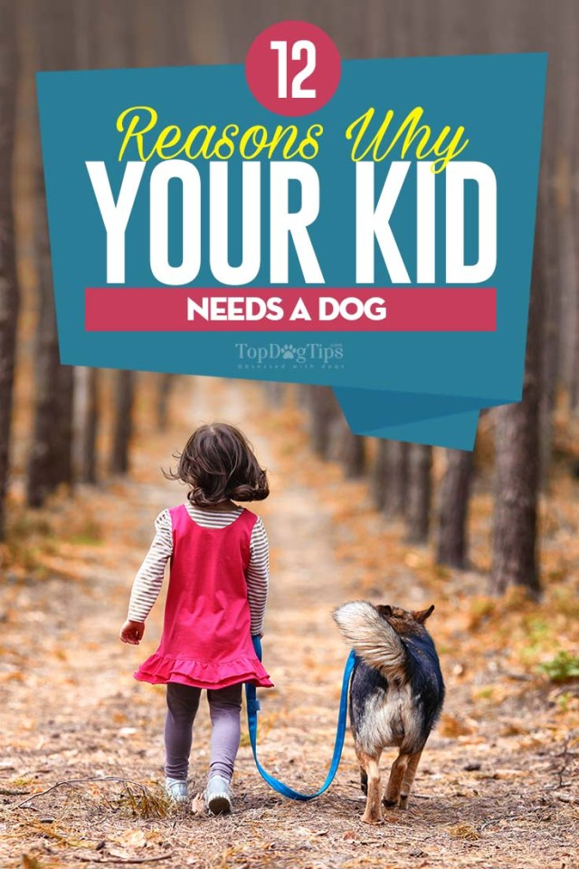 Reasons Why Kids Need a Dog