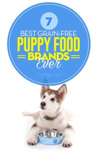 The Best Grain Free Puppy Food Brands