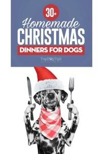 The Best Homemade Dogs Christmas Dinner Ideas