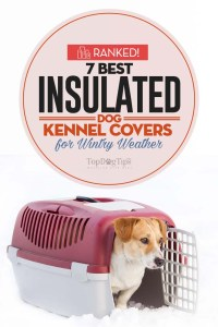 The Best insulated dog kennel covers