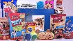 Specialty Gift Boxes' Jumbo Dog Gift Box Basket