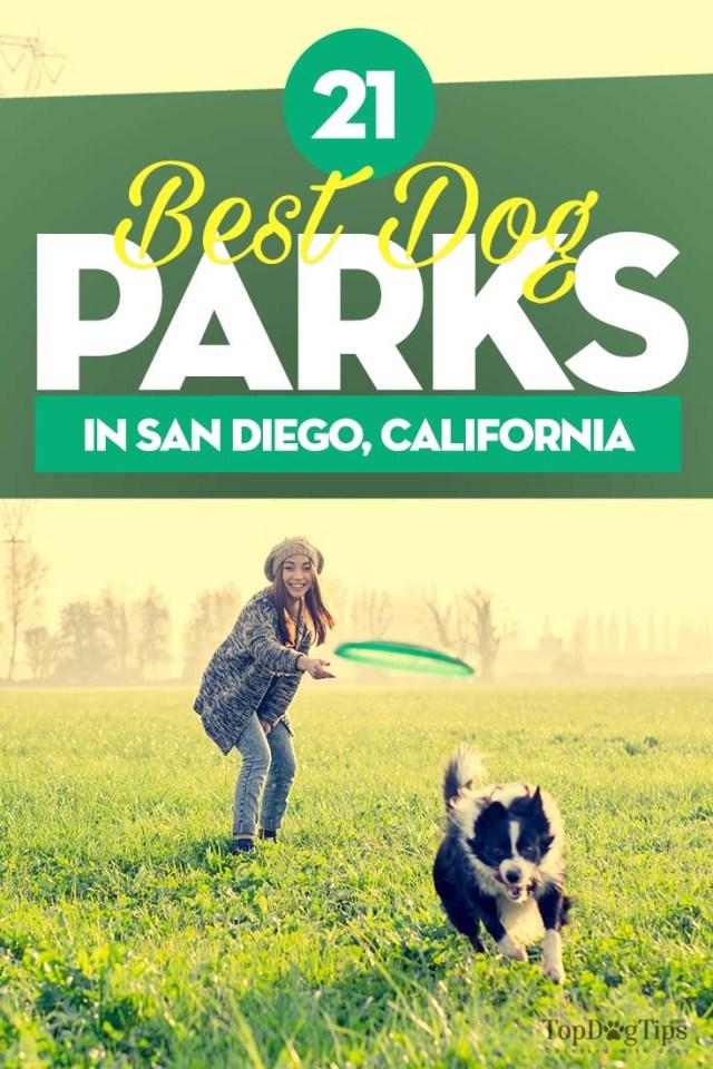 Best Dog Parks in San Diego