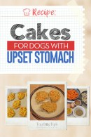 Chicken and Rice Cakes for Dogs with Upset Stomach Recipe