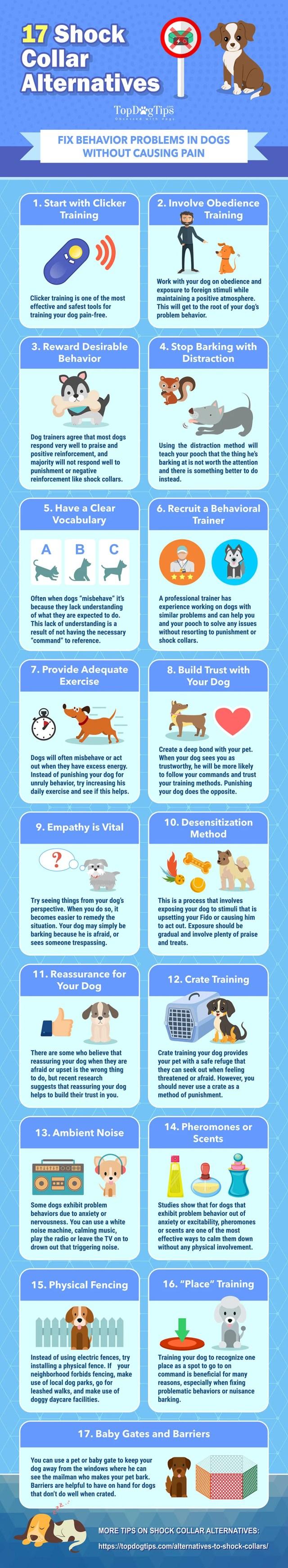 17 Alternatives to Dog Shock Collars [Infographic]
