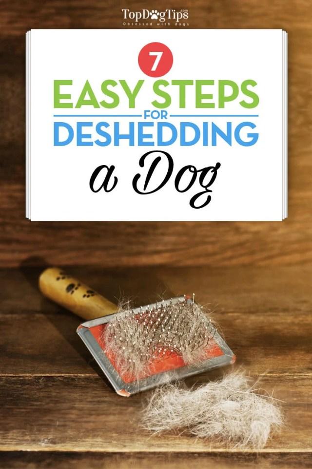 7 Steps to Deshedding a Dog Checklist