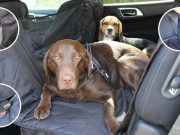 Best Car Seat Covers for Dogs for Cars
