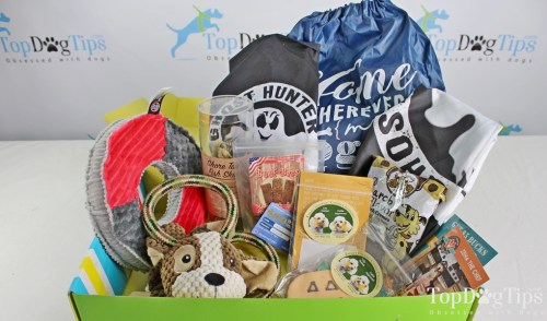 How to Pick the Best Dog Subscription Box for You
