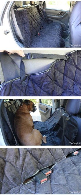 Picking the Best Car Seat Covers for Dogs