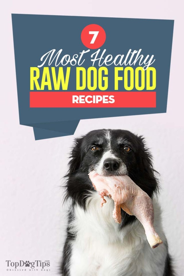 The 7 Best Raw Dog Food Recipes to Try