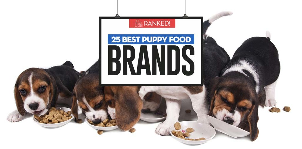 The Best Puppy Food Brands 2018