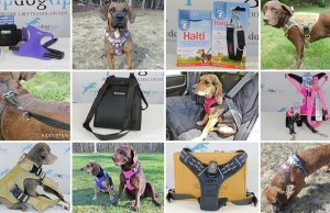 Top 10 Best Dog Harness 2020