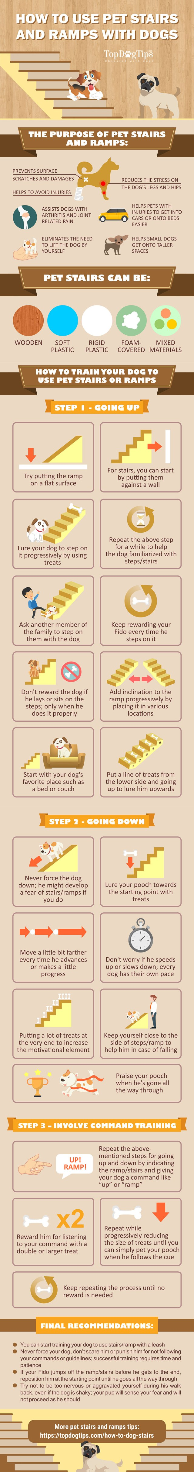 How to Train Dogs to Use Stairs and Ramps - Infographic