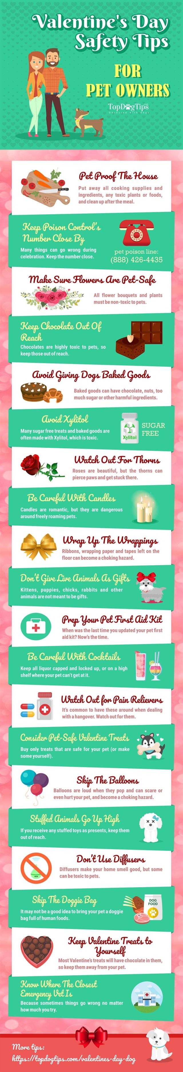 Valentines Pet Safety
