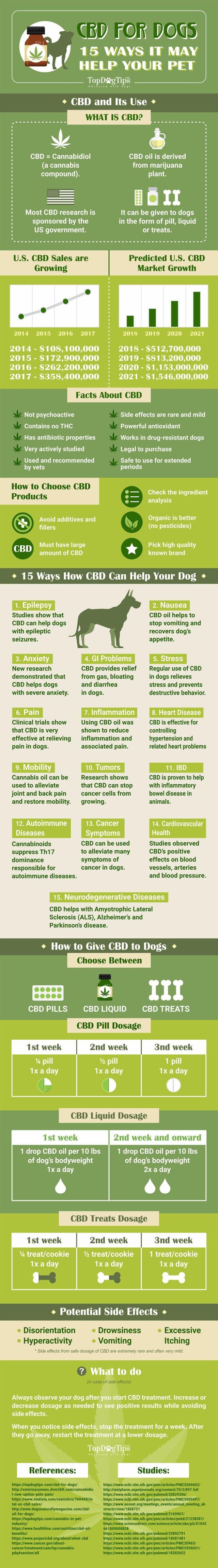 CBD and Dogs