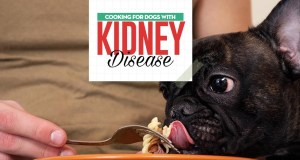 Dog Kidney Disease Diet - Science-based Guidelines on Feeding Dogs