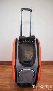 IBIYAYA Lightweight Dog Stroller