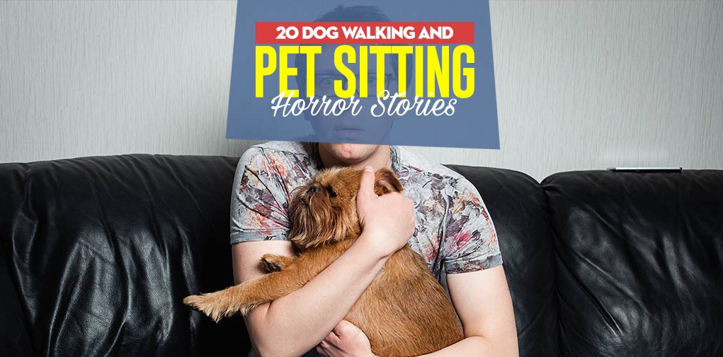 20 Dog Walking and Sitting Horror Stories