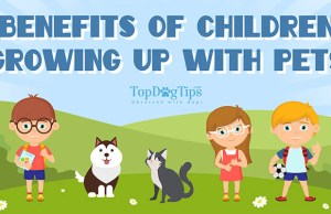 25 Benefits of Kids Growing Up with Pets