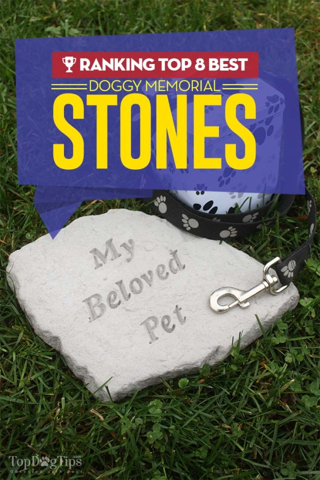 8 Best Dog Memorial Stone Choices 2020