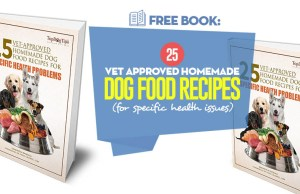 Our 25 Vet Approved Homemade Dog Food Recipes