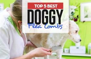 Top 5 Best Dog Flea Combs for Every Coat Type