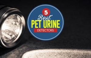 Top 5 Best Dog Urine Detector