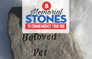 Top 8 Best Pet Memorial Stones to Keep Your Dog's Memory Alive