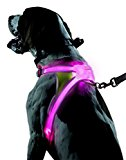 Noxgear LightHound Reflective Harness for Dogs